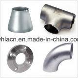 De Precisie die van het roestvrij staal CNC gieten die Pijp machinaal bewerken