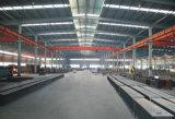 Gruppo di lavoro verniciato della struttura d'acciaio con lo strato ondulato (X G Z-SSW 194)