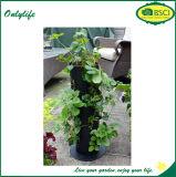 La pianta verticale ecologica delle piantatrici del giardino della parete di Onlylife coltiva i sacchetti per le iarde
