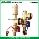 Vanne d'évacuation d'air forgée en laiton de qualité personnalisée (IC-3074)