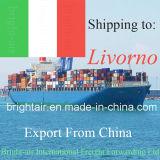 Agente de transporte do transporte do oceano de China Logística Companhia de China a Livorno
