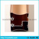 El aluminio sacó perfil de las secciones para el rectángulo ligero (RS-SP3939S)