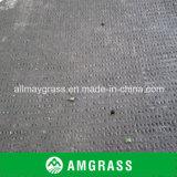 Hierba artificial del césped de la cancha de básquet del tenis (AN-12A)