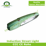80W~150W IP65 Solar Induction Street Light avec 5 Years Warranty