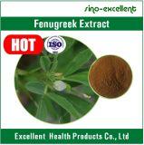 Polvo natural del extracto de Trigonellae del semen