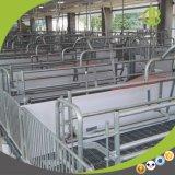Morden 돼지 농장을%s 유럽식 직류 전기를 통한 Anti-Corrosion 크레이트 사용