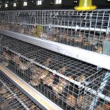 自動挿入を用いる電流を通された鶏の繁殖の農業機械電池の若めんどりのケージ