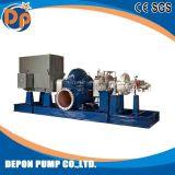 Energiesparende horizontale doppelte Absaugung-Spiralen-aufgeteilte Kasten-Wasser-Pumpe