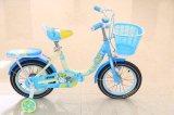 Bicicleta de formação de 2016 crianças das rodas do estilo 2 novos com o cofre forte dianteiro do banco traseiro para miúdos