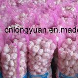 Aglio bianco normale fresco cinese (4.5cm ed aumentano)