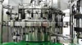 Terminar a máquina de enchimento da cerveja para o frasco de vidro