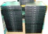 Petit amplificateur de puissance de série de Ds de watt de performance stable (DS250)