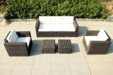 Mobilia del sofà del rattan/sofà esterno del rattan (SC-B9508-H)