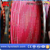 260 gradi per Red Steam Hose
