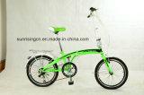 Складывая велосипед Foldinc001