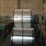Warmgewalste Rol 304 van het Roestvrij staal