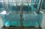 de Zaal van de Douche van 10mm & het Aangemaakte Glas van de Douche Bijlage met de Knipsels van de Scharnier