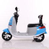 Le meilleur scooter électrique de vente de 3 gosses de roues mini avec En71