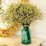 Стеклянная бутылка/стеклянная ваза/ваза украшения
