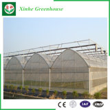 Landwirtschafts-multi Überspannungs-Film-grünes Haus für das Pflanzen