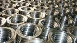 Mild fucinato Steel Flanges (4 fori)