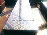 Madeira compensada da construção do núcleo do vidoeiro/folhosa do Poplar/e madeira compensada do molde (HB208)