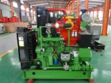 30kw biogás Genset/exportación del motor del conjunto de generador del gas 4105 a Rusia