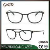 Lente inoxidable Eyewear del marco óptico de los vidrios del último diseño de la manera nuevo