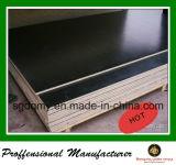 인도를 위한 1 Time Pressed 18mm Plywood Price