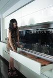 A cozinha nova da laca 2017 livra o mais tarde o projeto moderno do estilo (zz-039)