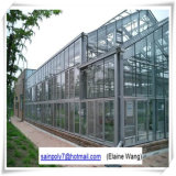 Estufa de vidro do sistema hidropónico para o tomate
