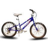 Nouvelle bicyclette (WTB122001)