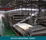 Filter tessuto Fabric Filter Cloth in Belt Type Press Filter per Slurry Treatment