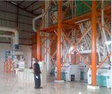 полная строка маиса 150t филируя в Замбии
