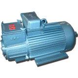 De professionele Elektrische Motor van Yzr van de Motor van de Ring van de Misstap