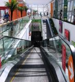 Caminhada movente de alameda de compra da alta qualidade do SRH (com ângulo)