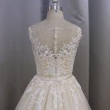 Champagne-Farben-lange Serie, die Spitze-Hochzeits-Kleid bördelt