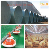 Vorfabriziertes Metal Panel in Steel Construction From China Manufacturer