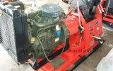 Plate-forme de forage hydraulique portative de puits d'eau Hgy-300 à vendre