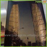 中国の工場供給のインポートPVC 3D壁のステッカー