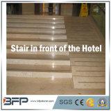Escadas de pedra de mármore naturais elegantes/etapas/Step&Riser/Treads para Ineterior & exterior