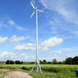 mercado padrão de Japão da Classe-Nk da turbina de vento 5kw