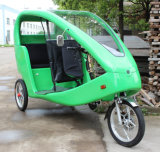 Park Touring를 위한 1000W Electric Sightseeing Tricycle/Electric Trick