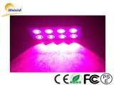 O diodo emissor de luz da alta qualidade cresce claro para a planta e as ervas do impulso