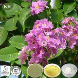Lutter contre l'acide 1%~98% de Corosolic d'extrait de lame de Diebetes Banaba par HPLC