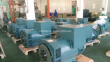 200kw a CA Brushless Electric Generators di 320kw Faraday Brand in Cina