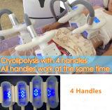Corps de 4 Handpieces Cryolipolysis amincissant la machine de perte de poids