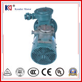 Высокомощный электрический двигатель Переменн-Частоты AC с регулировать скорости