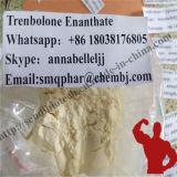 Tren 노란 스테로이드 분말 Trenbolone Enanthate Parabolan Tren E CAS 472-61-546