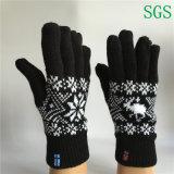 Il jacquard poco costoso di modo caldo di inverno di doppio strato ha lavorato a maglia cinque guanti della barretta